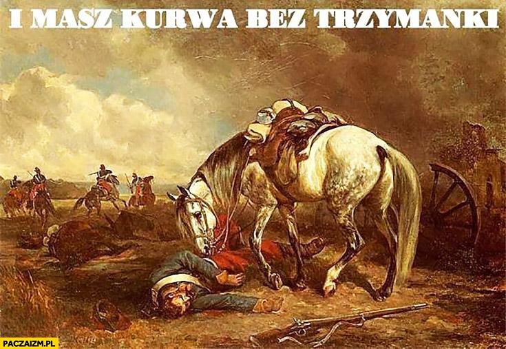 I masz kurna bez trzymanki facet spadł z konia