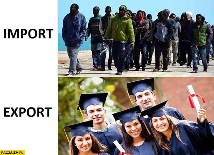 Import imigranci eksport wykształceni młodzi