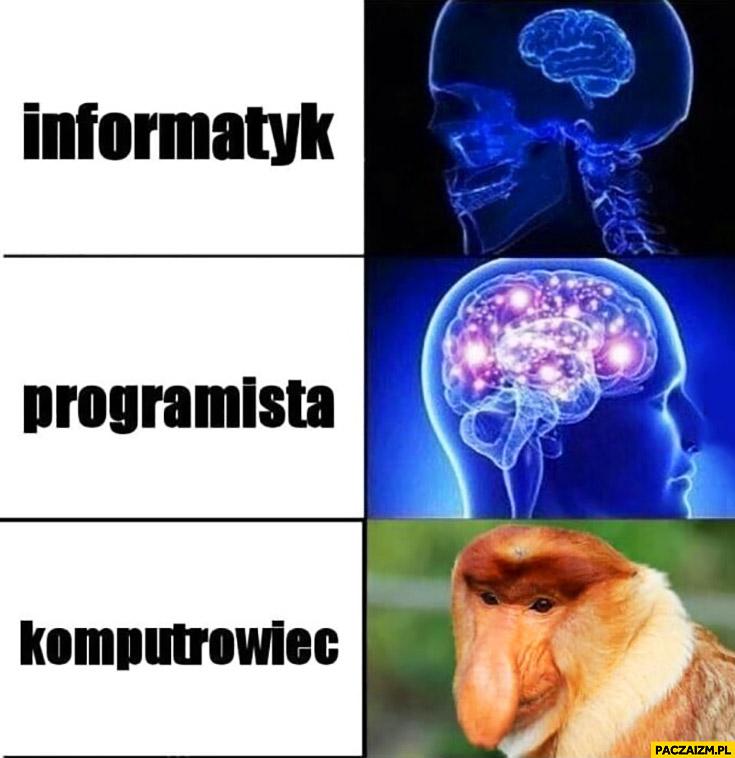 Informatyk, programista, komputerowiec typowy Polak nosacz małpa mózg