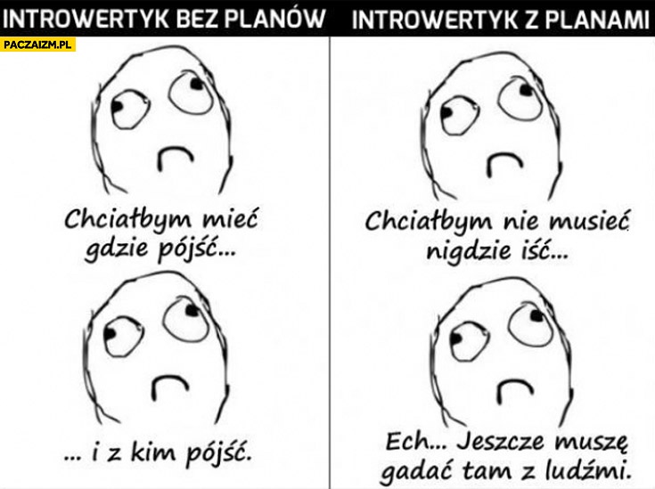 https://paczaizm.pl/content/wp-content/uploads/introwertyk-bez-planow-introwertyk-z-planami-porownanie.jpg