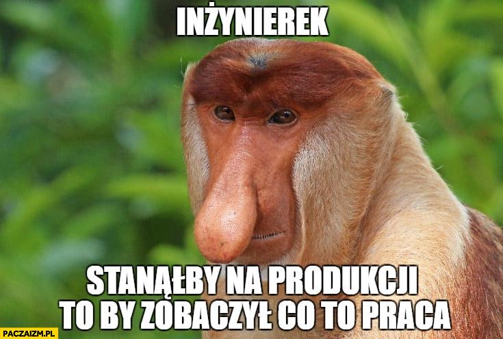 Inżynierek stanąłby na produkcji to by zobaczył co to praca typowy Polak nosacz małpa