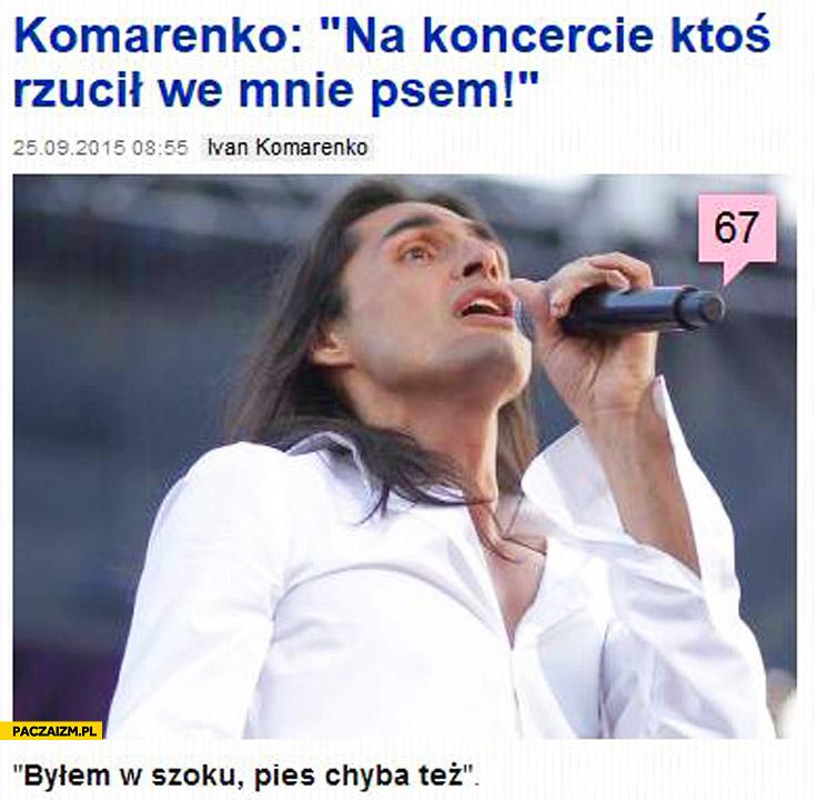 Ivan Komarenko na koncercie ktoś rzucił we mnie psem byłem w szoku pies chyba też