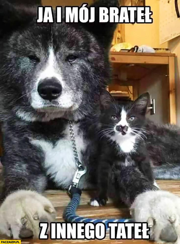 Ja i mój brateł z innego tateł pies i kot
