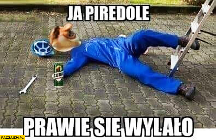 Ja pierdzielę prawie się wylało typowy Polak nosacz małpa spadł z drabiny z piwem