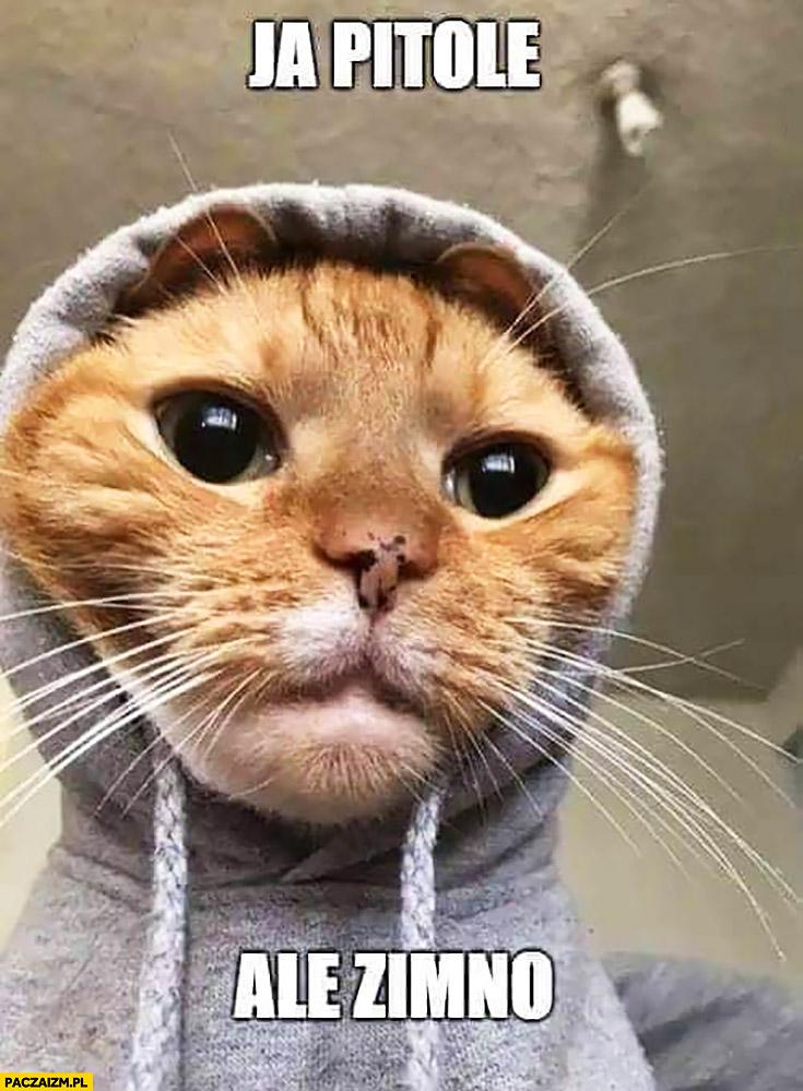 Ja pitolę ale zimno kot w bluzie z kapturem