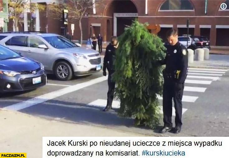 Jacek Kurski po nieudanej ucieczce z miejsca wypadku prowadzony na komisariat drzewo gałęzie liście