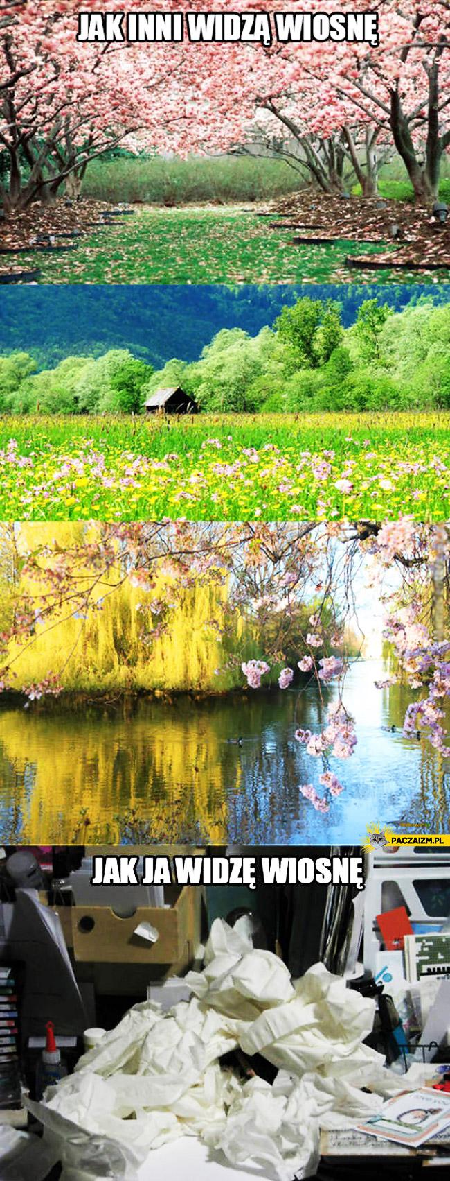 Jak inni widzą wiosnę jak ja widzę wiosnę