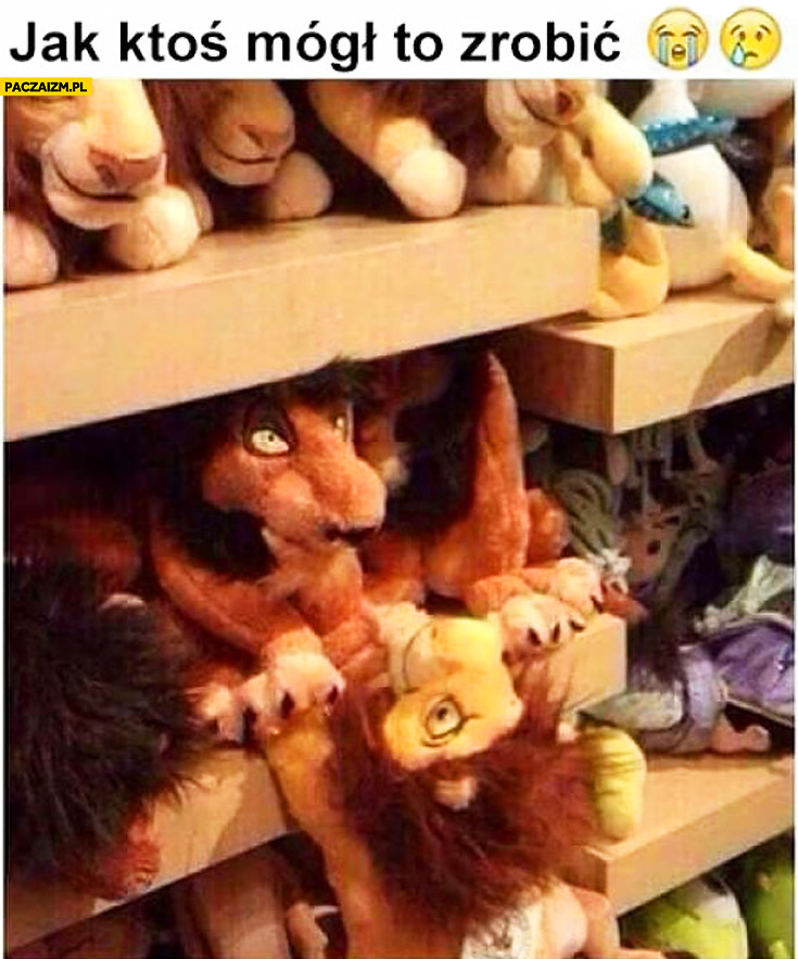 Jak ktoś mógł tak zrobić Skaza Mufasa sklep z zabawkami