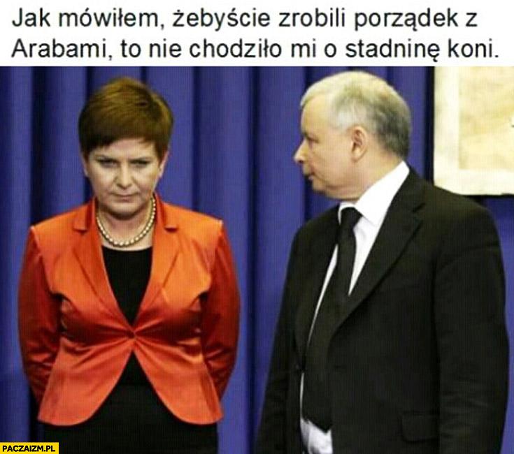 Jak mówiłem żebyście zrobili porządek z Arabami to nie chodziło mi o stadninę koni Szydło Kaczyński