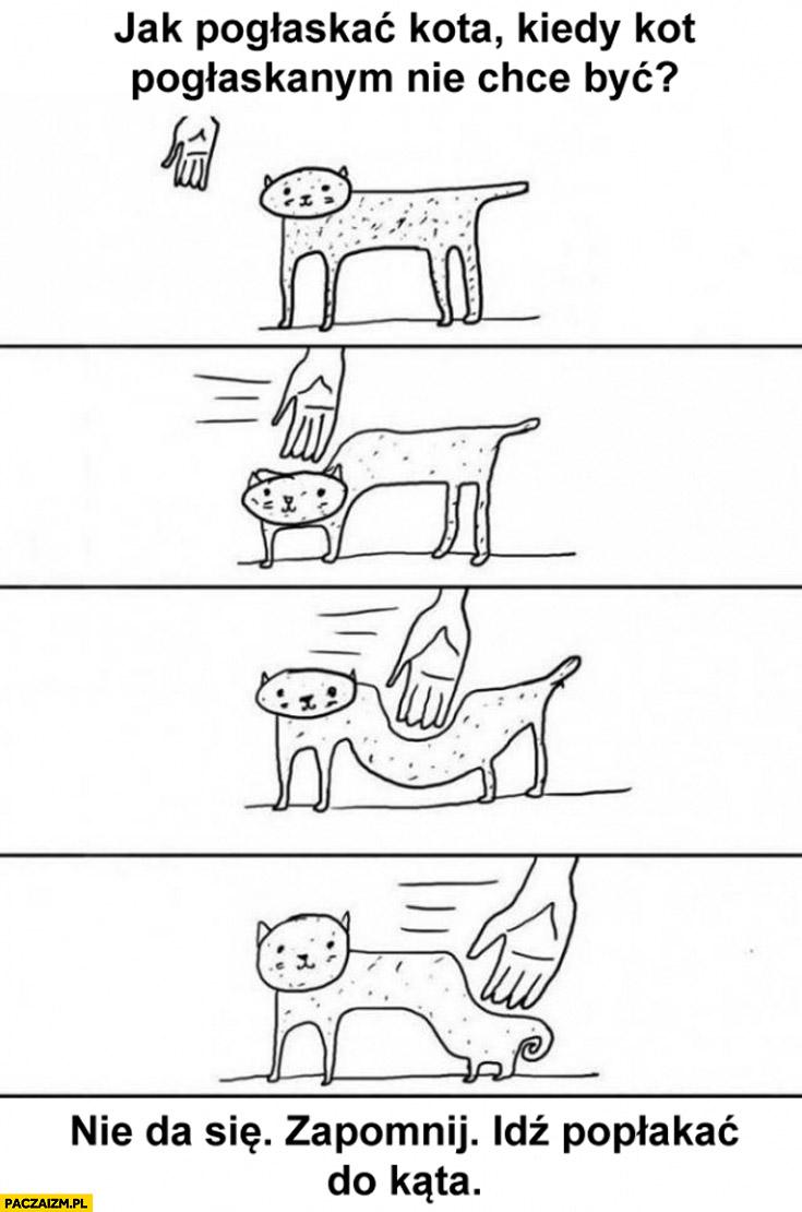 Jak pogłaskać kota kiedy kot pogłaskanym nie chce być? Nie da się, zapomnij unik