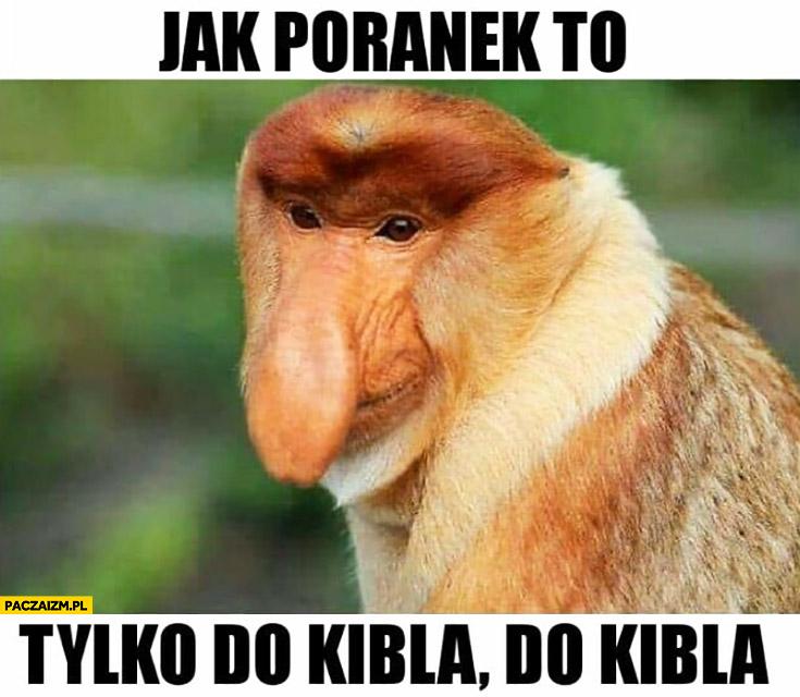 Jak poranek to tylko do kibla do kibla reklama do Lidla typowy Polak nosacz małpa