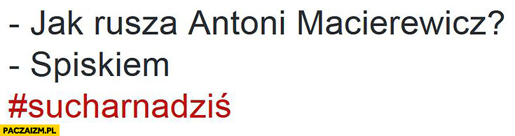 Jak rusza Antoni Macierewicz? Spiskiem