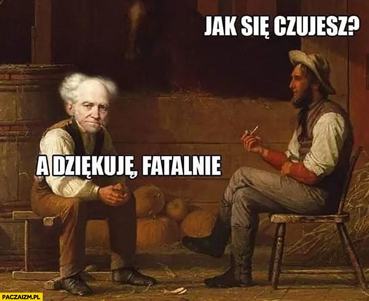 Schopenhauer Memy Paczaizmpl Memy Polityczne śmieszne