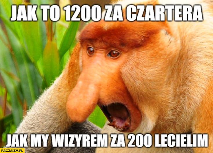 Jak to 1200 za czartera jak mi WizzAirem za 200 lecieliśmy? Typowy polak nosacz małpa