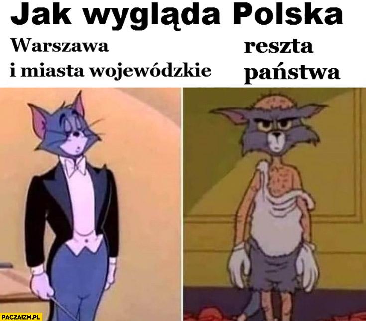 Jak wygląda Polska: Warszawa i inne miasta wojewódzkie vs reszta kraju państwa kot Tom i Jerry