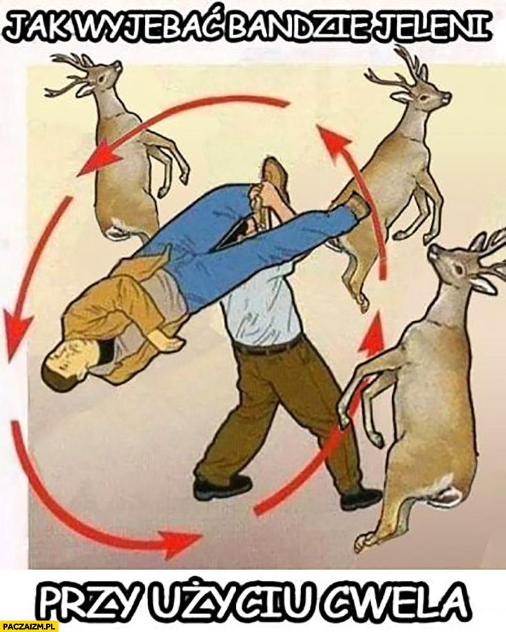 Jak wyjechać bandzie jeleni przy użyciu cwela instrukcja porada