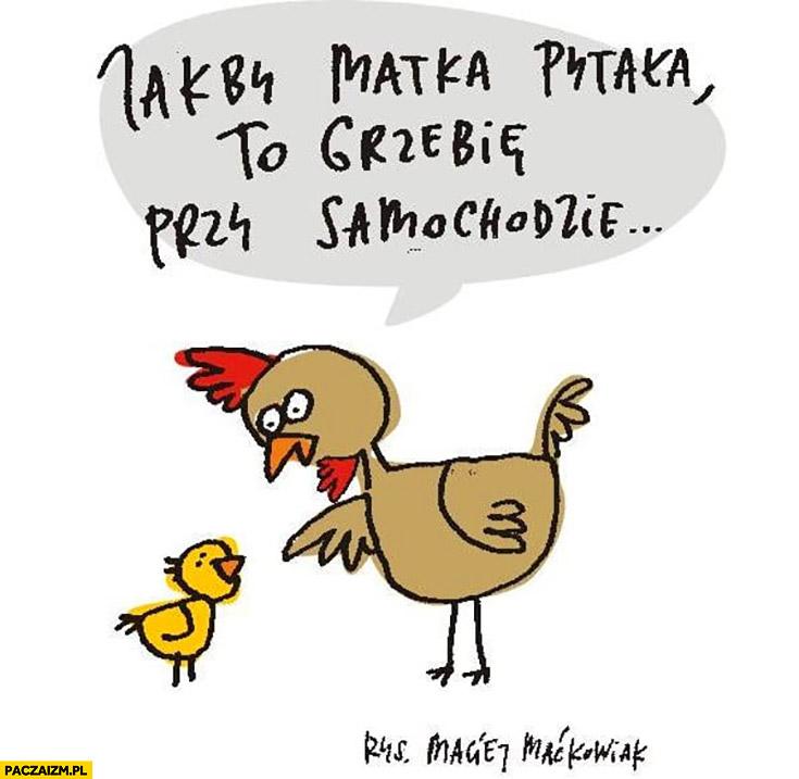 Jakby matka pytała to grzebie przy samochodzie kura kury kogut Maćkowiak