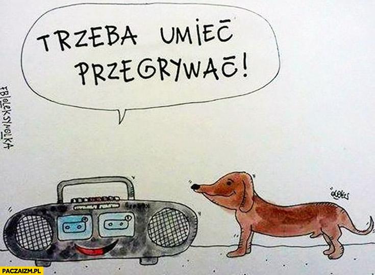 Jamknik pies radioodtwarzacz trzeba umieć przegrywać