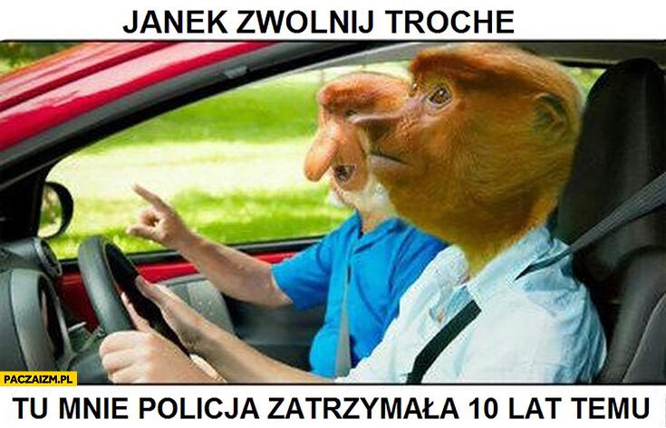 Janek zwolnij trochę, tu mnie policja zatrzymała 10 lat temu typowy Polak nosacz małpa