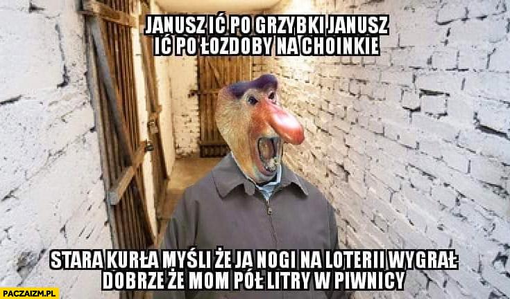 Janusz idź po grzybki ozdoby na choinkę myśli, że ja nogi na loterii wygrałem, dobrze, że mam pół litra w piwnicy typowy Polak nosacz małpa