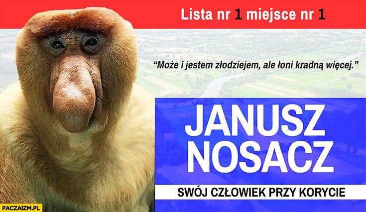 Janusz nosacz swój człowiek przy korycie może i jestem złodziejem, ale oni kradną więcej typowy Polak nosacz małpa
