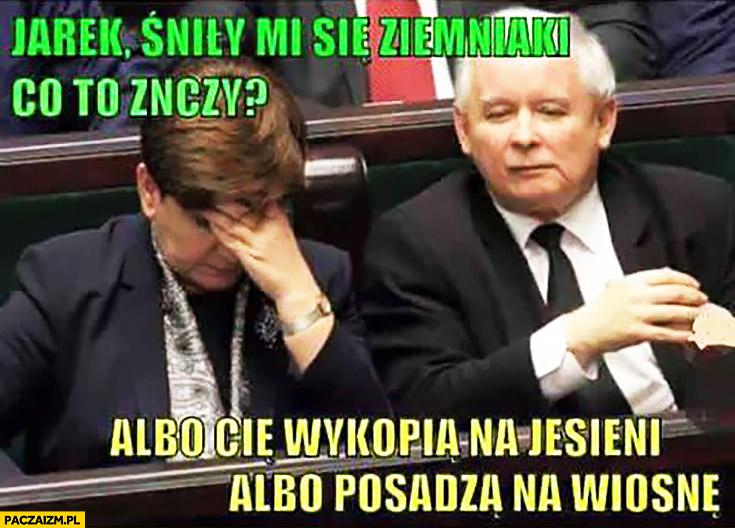 Jarek śniły mi się ziemniaki co to znaczy? Albo Cię wykopią na jesieni albo posadzą na wiosnę Szydło Kaczyński