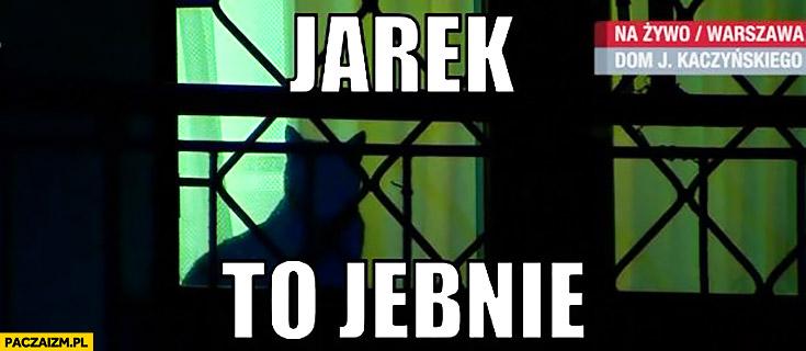 Jarek to jebnie kot Jarosława Kaczyńskiego dom patrzy z okna