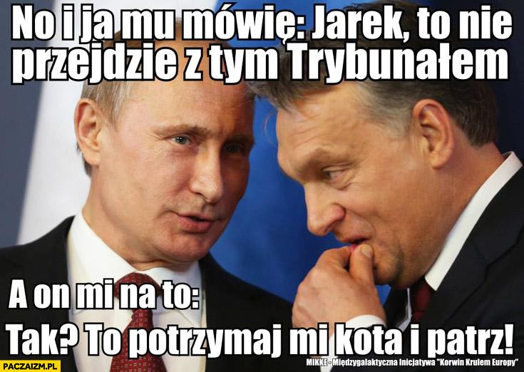 Jarek to nie przejdzie z tym trybunałem. A on na to: Tak? Potrzymaj mi kota i patrz. Kaczyński Putin Orban