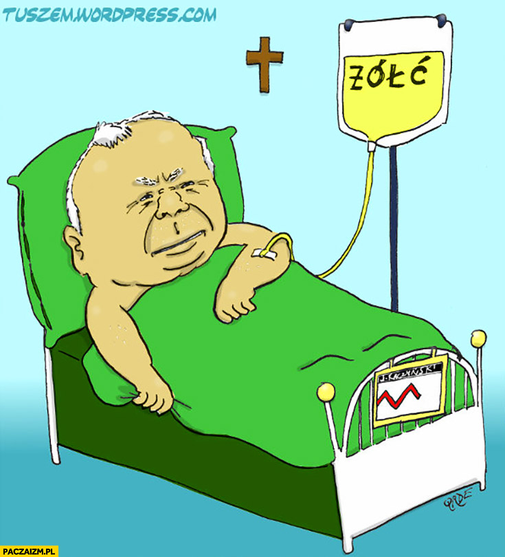 Jarosław Kaczyński kroplówka żółć rysunek