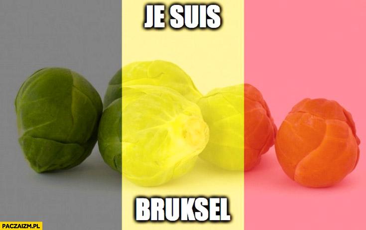 Je suis Bruksel flaga Belgii po zamachach brukselki