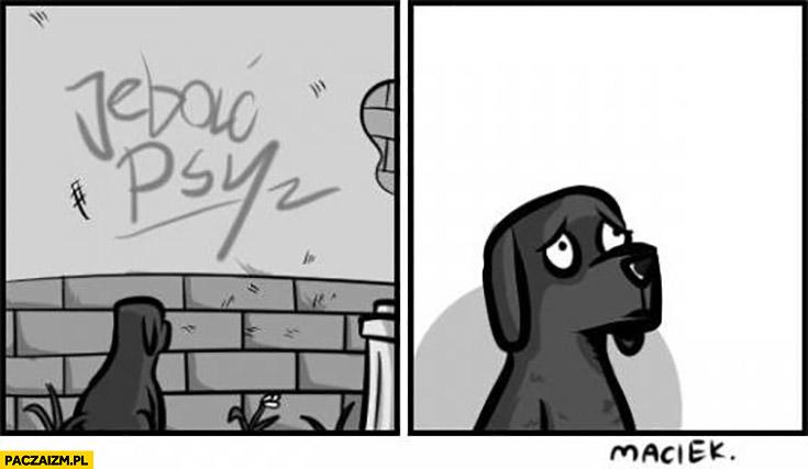 Jechać psy napis na murze smutny pies