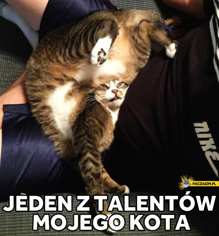 Jeden z talentów mojego kota