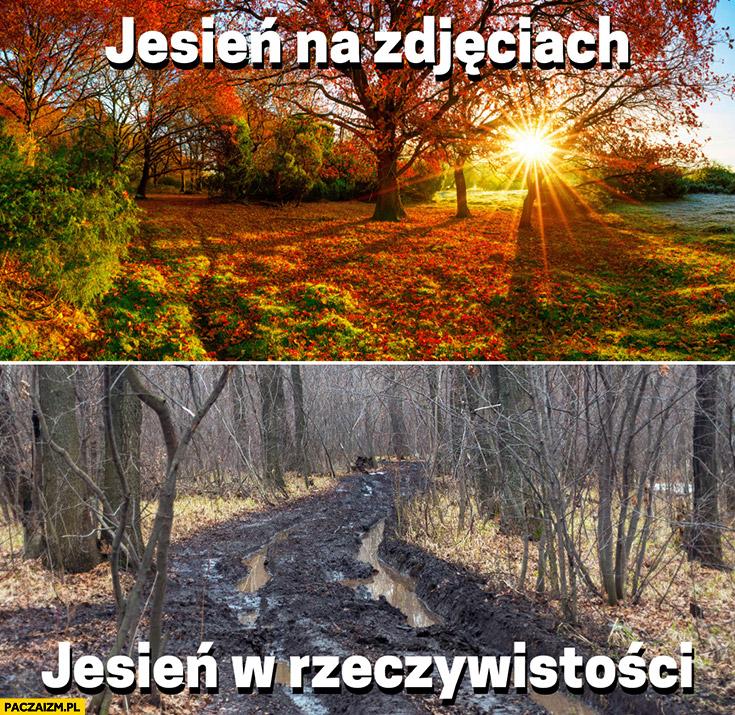 Jesień na zdjęciach vs jesień w rzeczywistości porównanie