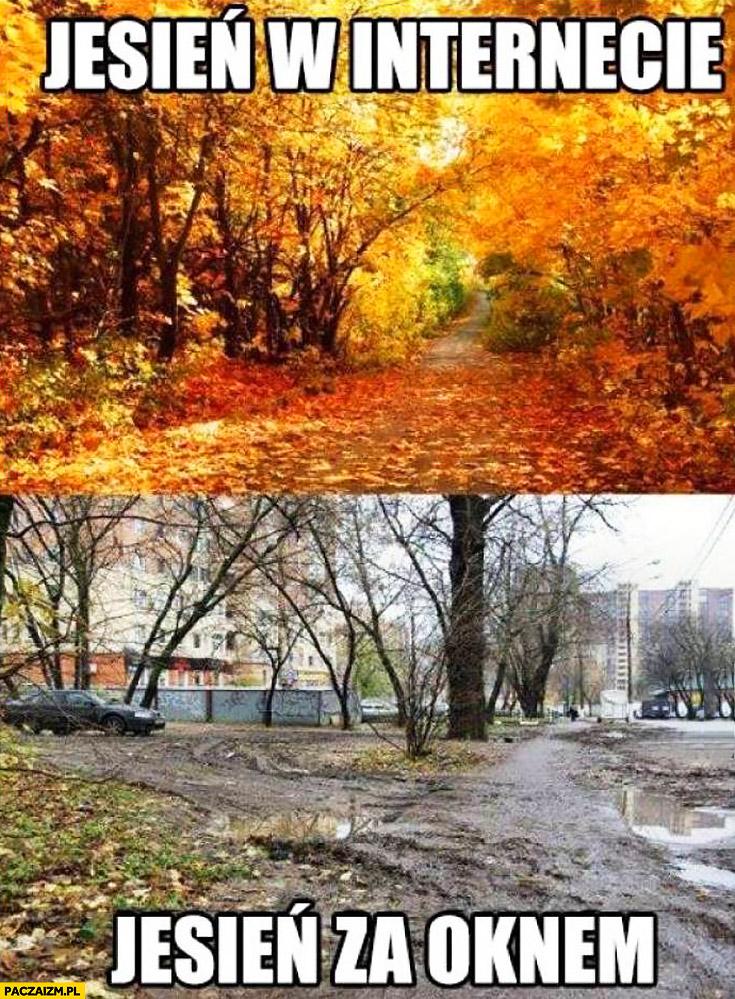 Jesień w internecie vs jesień za oknem porównanie