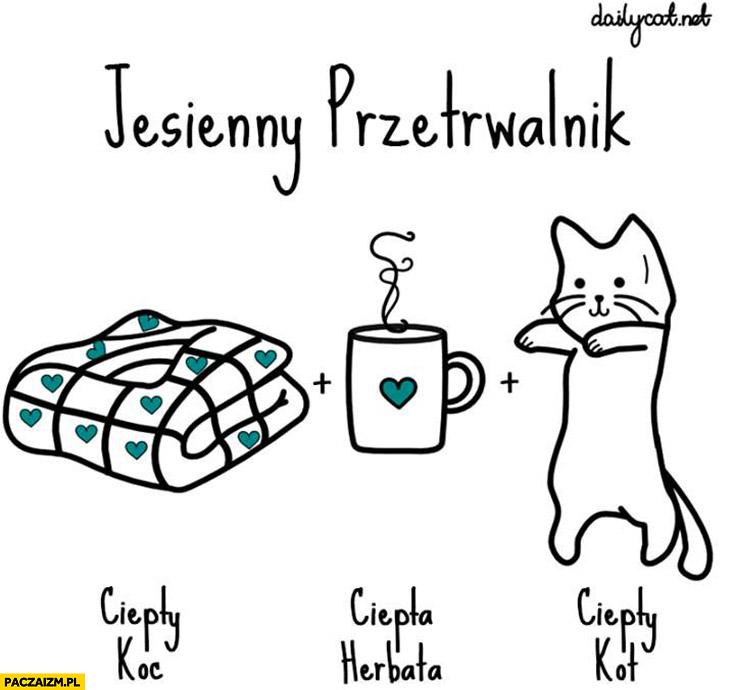 Jesienny przetrwalnik ciepły koc, ciepła herbata, ciepły kot
