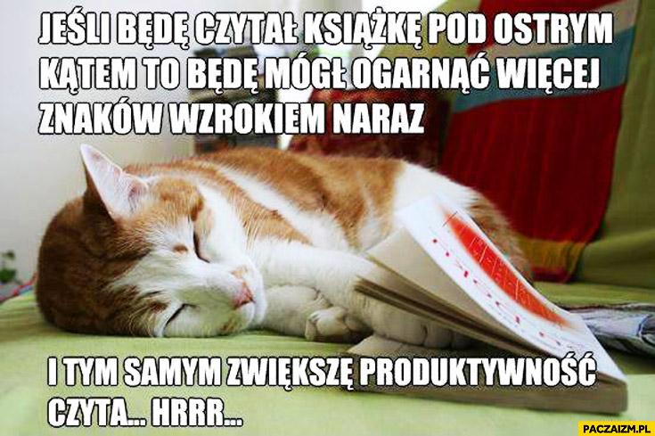Jeśli będę czytał książkę pod ostrym kątem będę mógł ogarnąć więcej znaków nara zwiększę produktywność śpiący kot