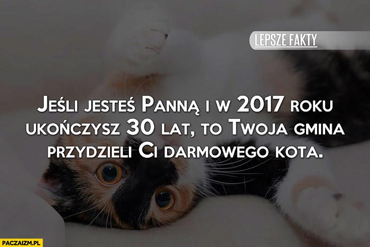 Jeśli jesteś panną i w 2017 roku ukończysz 30 lat to Twoja gmina przydzieli Ci darmowego kota