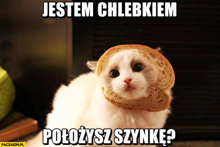 Jestem chlebkiem położysz szynkę kot
