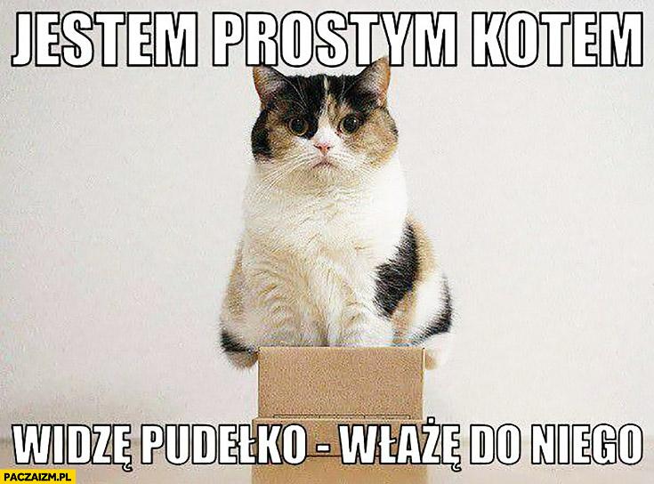 Jestem prostym kotem widzę pudełko, włażę do niego