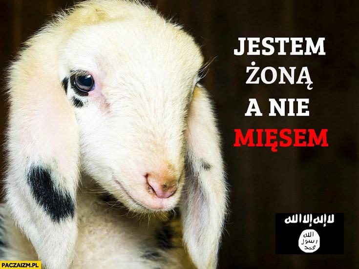 Jestem żoną a nie mięsem koza islam