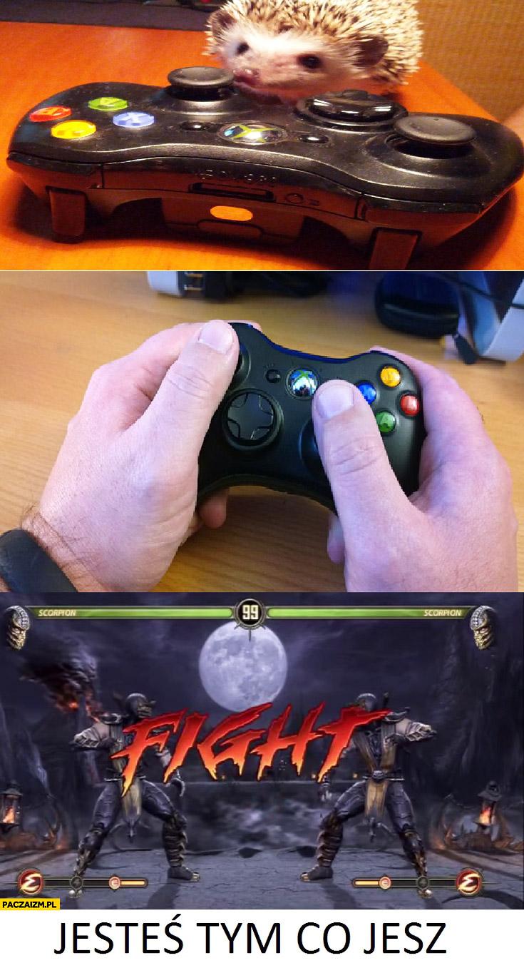 Jesteś tym co jesz Mortal Kombat gra jeż scorpion