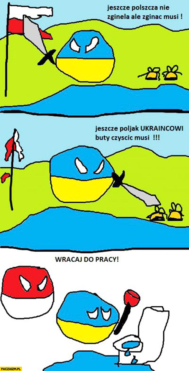 Jeszcze Polszcza nie zginęła ale zginąć musi, jeszcze Polak Ukraińcowi buty czyścić musi. Wracaj do pracy Polska Ukraina Polandball