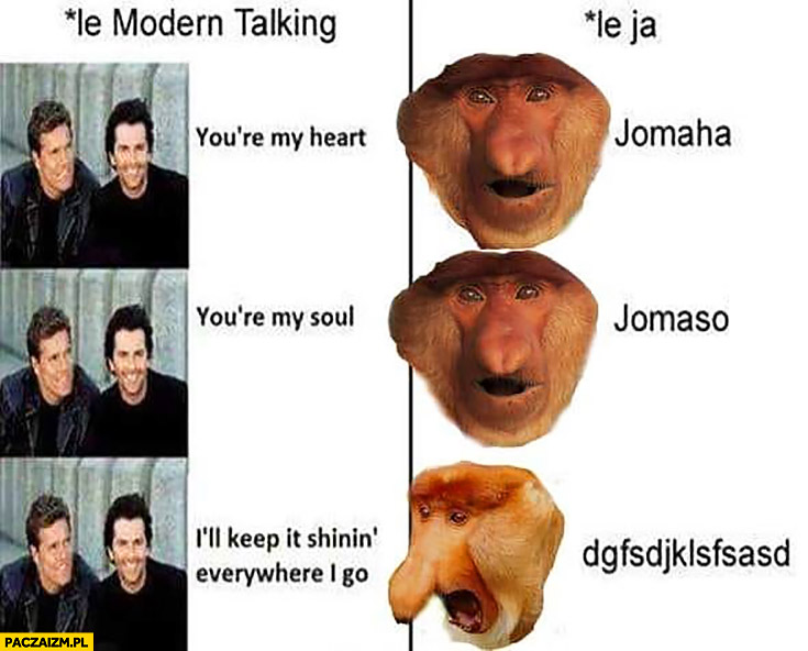 Jomaha, jomaso Polak śpiewa Modern Talking małpa nosacz