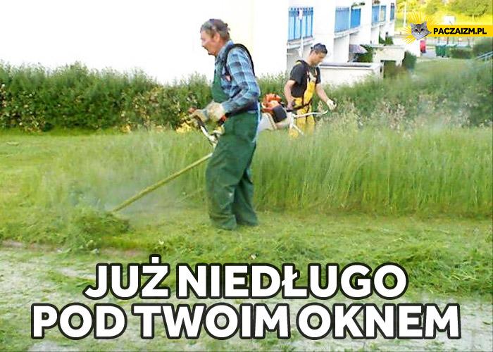 Już niedługo pod twoim oknem koszenie trawy
