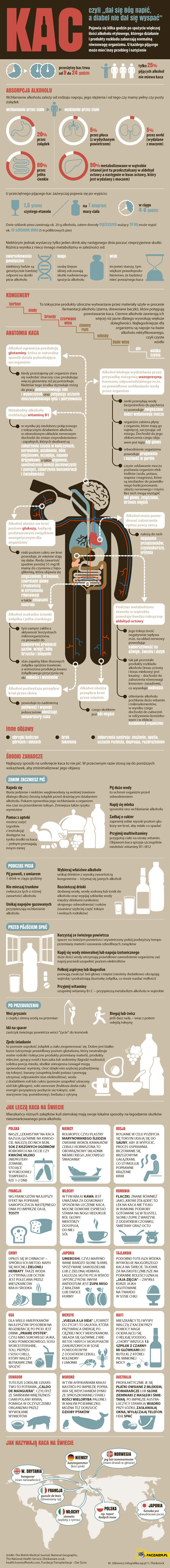 Kac infografika