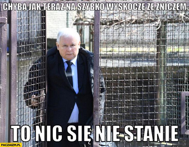 Kaczyński chyba jak teraz na szybko wyskoczę ze zniczem to nic się nie stanie?