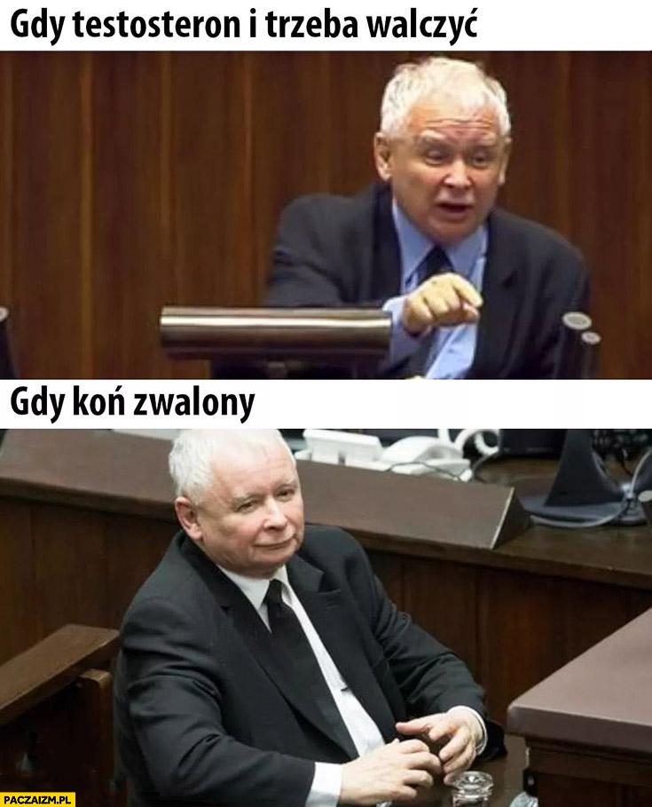 Kaczyński gdy testosteron i trzeba walczyć vs gdy koń zwalony