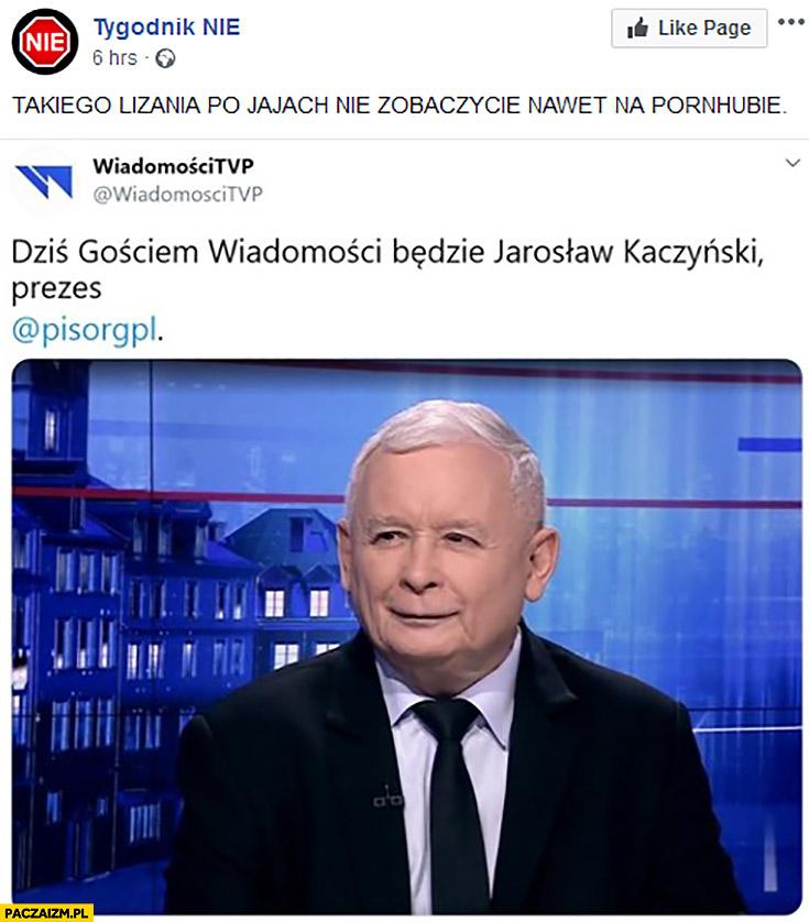 Kaczyński gość Wiadomości TVP takiego lizania po jajach nie zobaczycie nawet na stronach dla dorosłych