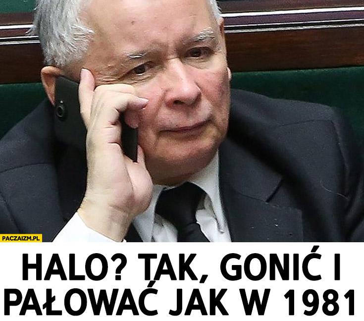 Kaczyński halo tak gonić i palować jak w 1981