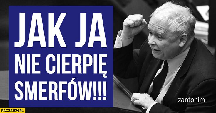 Kaczyński jak ja nie cierpię smerfów